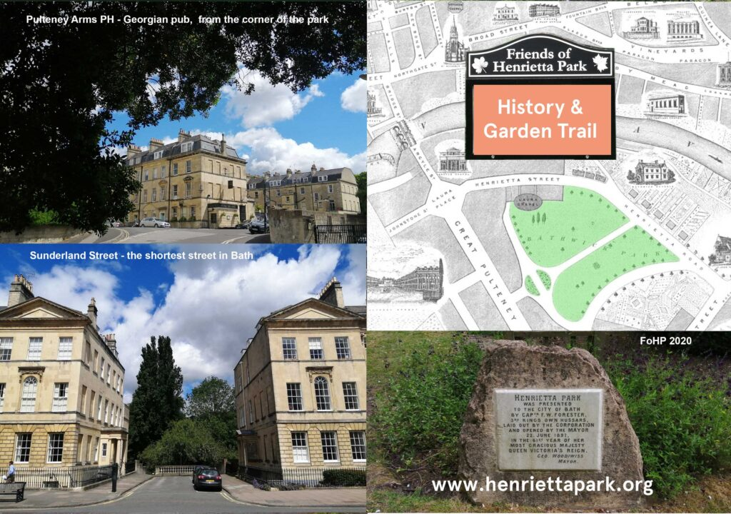 History and Garden 1