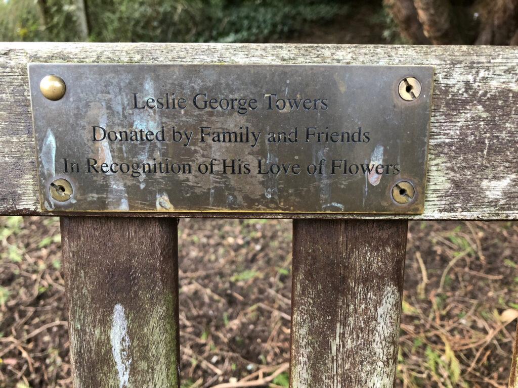 Lesley George Towers
